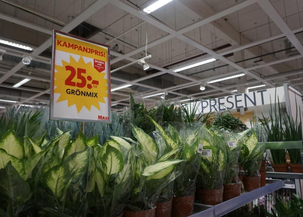 Växtriket varierar efter säsong - tänk på att ha flexibla butikslösningar i din affär för när förändringar kommer runt kröken.